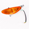 Geiwiz Blinker vorn links für BT49QT-9 orange